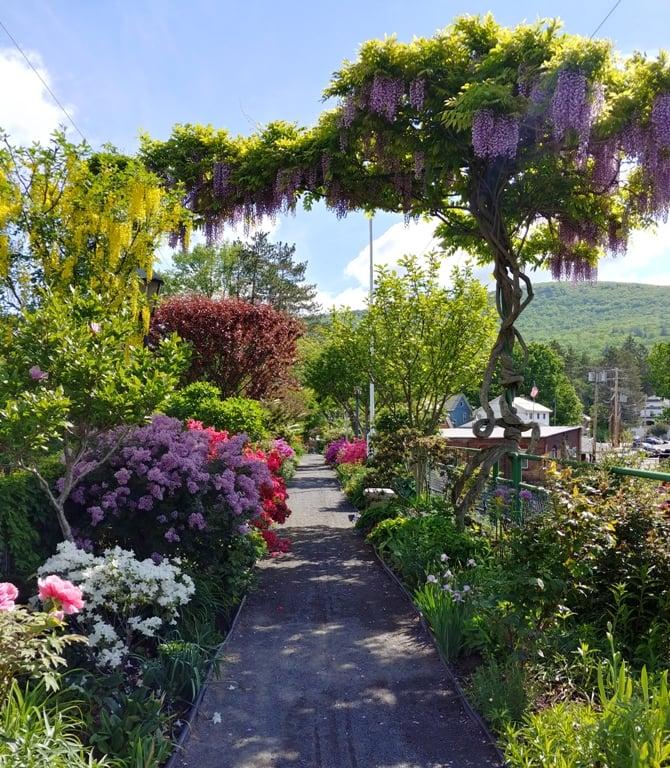 bridge of flowers reopening shelburne falls mass