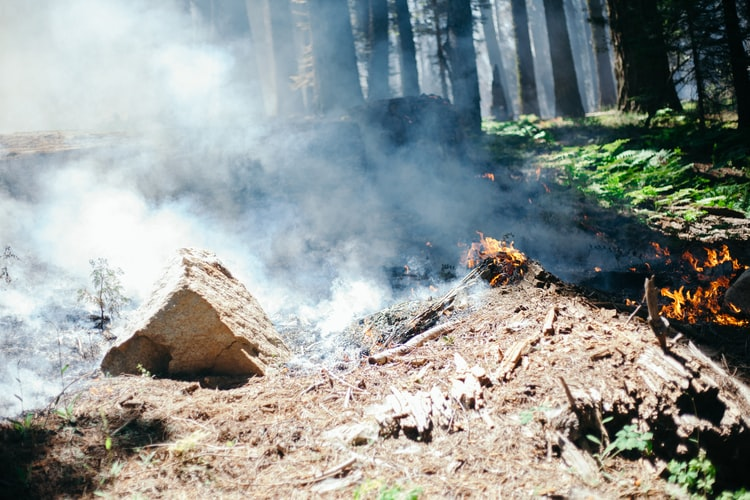 brush burning open fire safety