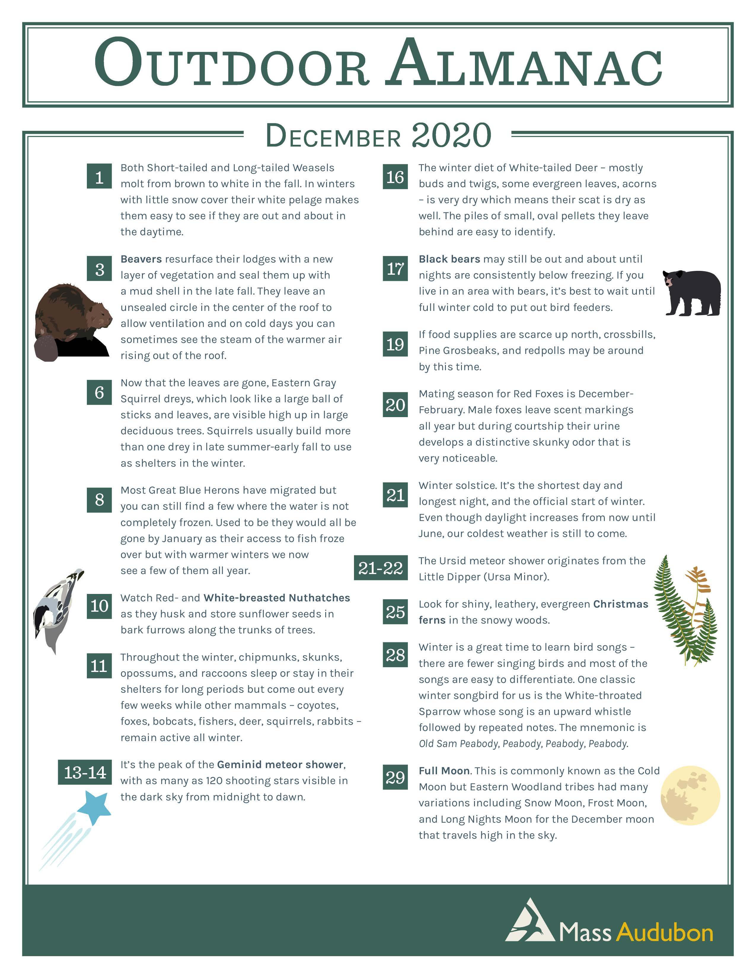 december 2020 outdoor almanac mass audubon