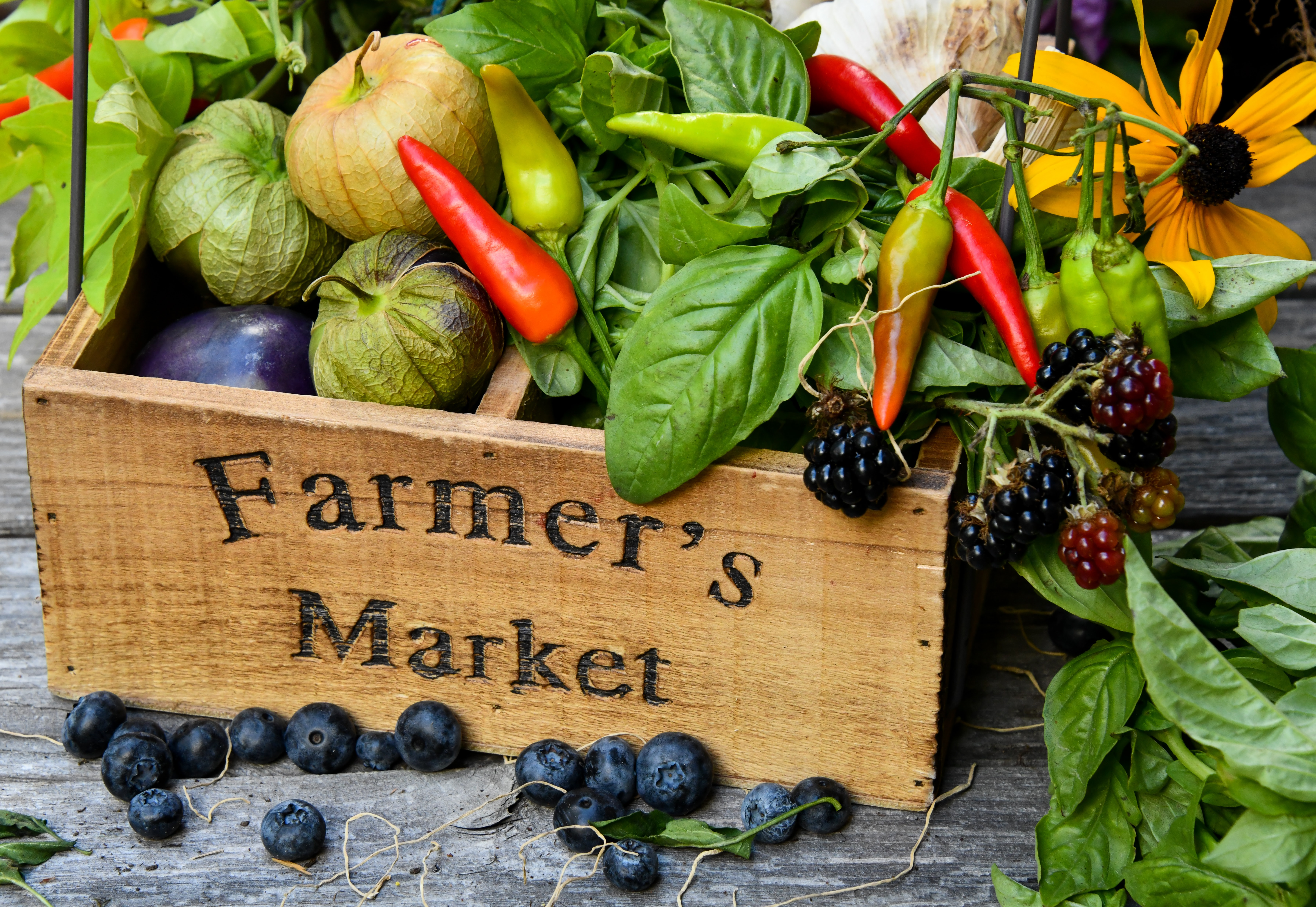local produce western mass