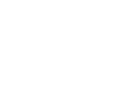 Dolan Real Estate Logo