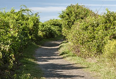Sachuest Path in Middletown Rhode Island