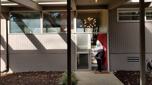 Carol Marin Asheville Real Estate Agent