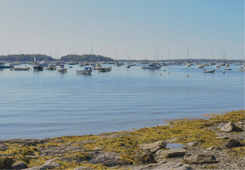 Sailboats moored in a bay in Falmouth, Maine
