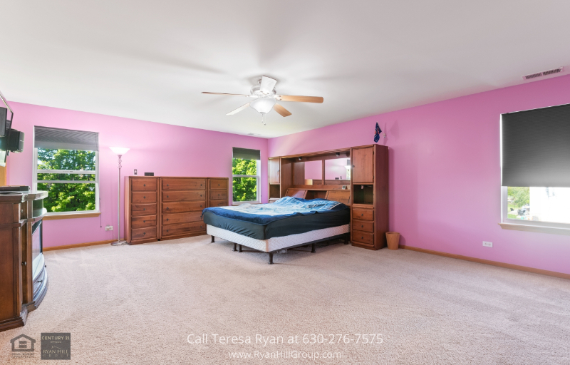 Plainfield IL home for sale - Snuggle peacefully under the covers of this master suite that comes with an expansive walk-in closet and elegant master bath in this Plainfield IL real estate