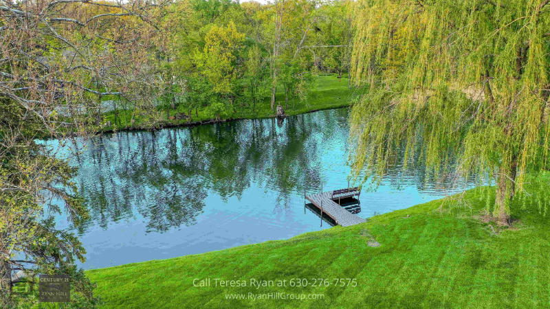 Bensenville, IL homes for sale - Go fishing in your own backyard pond in this Bensenville, IL home for sale
