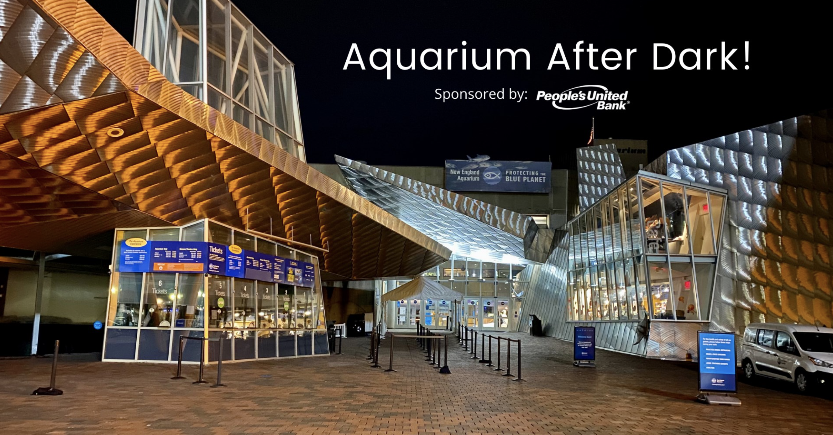 Aquarium After Dark