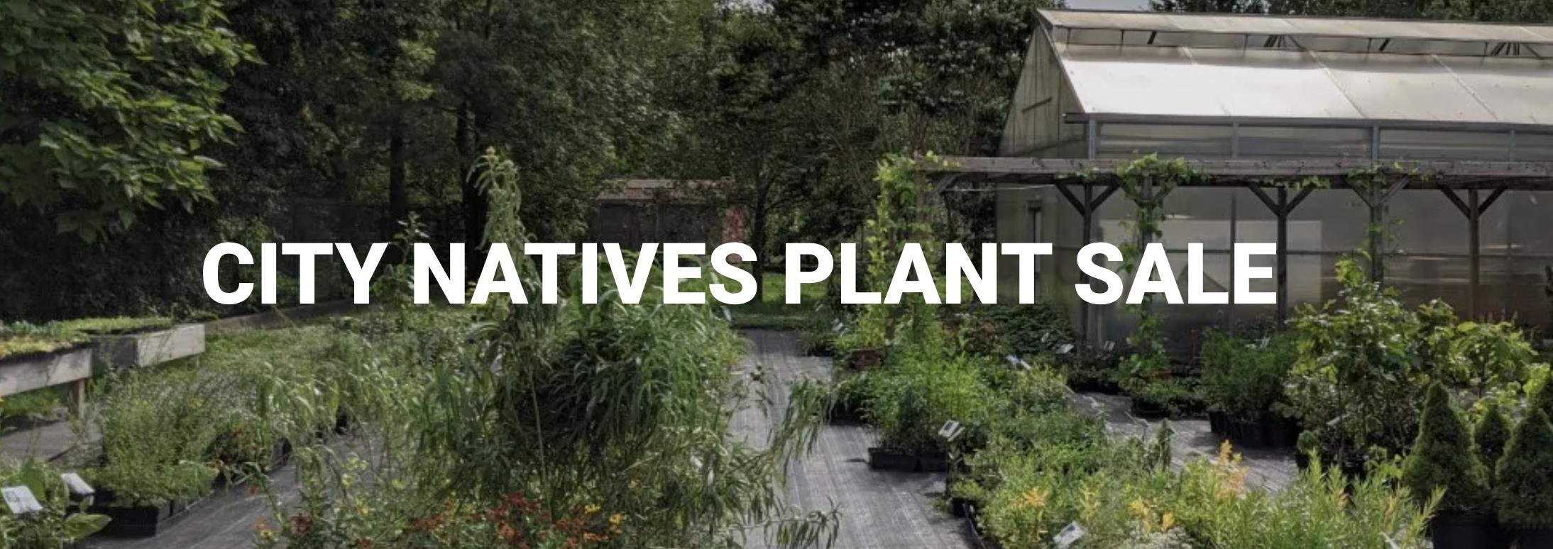 City Natives Plant Sale