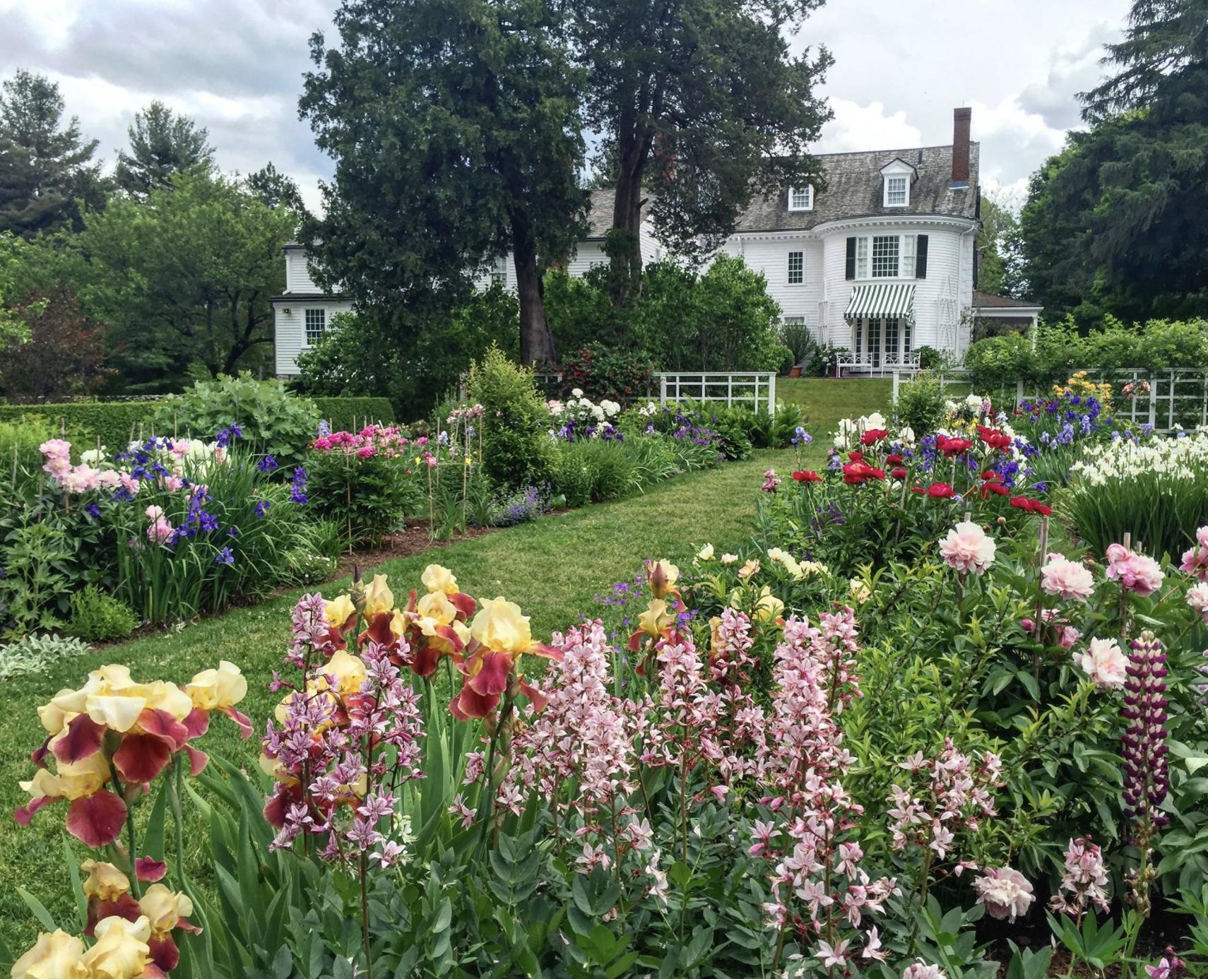 Garden tours at Steven Coolidge House