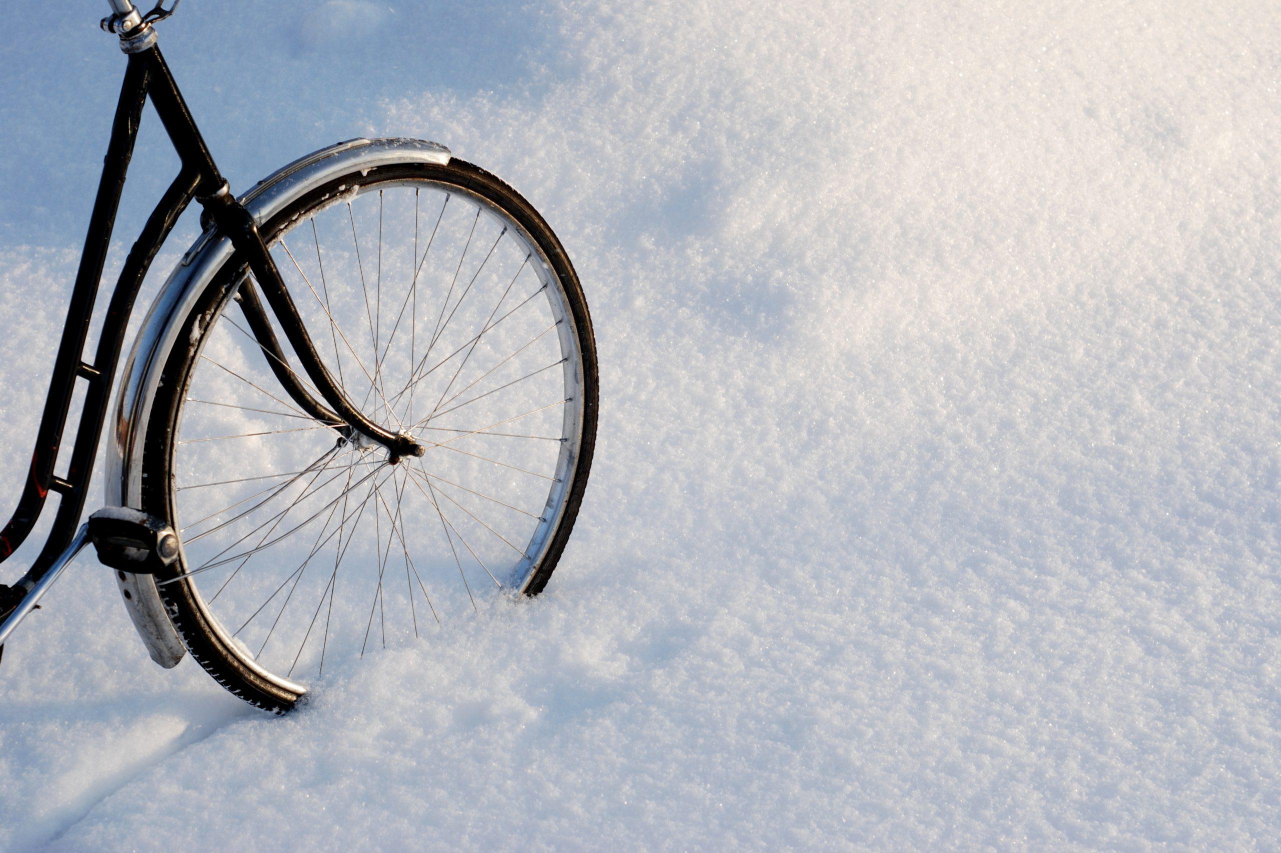 PorchLight Real Estate - Real Estate Denver - Bike in Snow