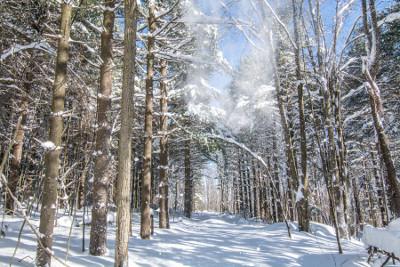 Winter in Garrett County, Maryland