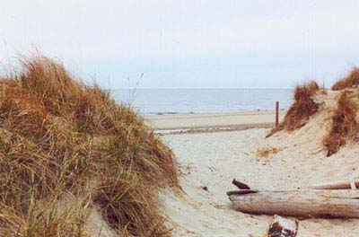 Sanwich Cape Cod Beaches