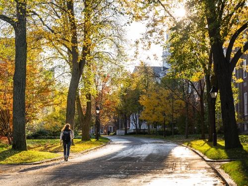 Walking in Cambridge MA