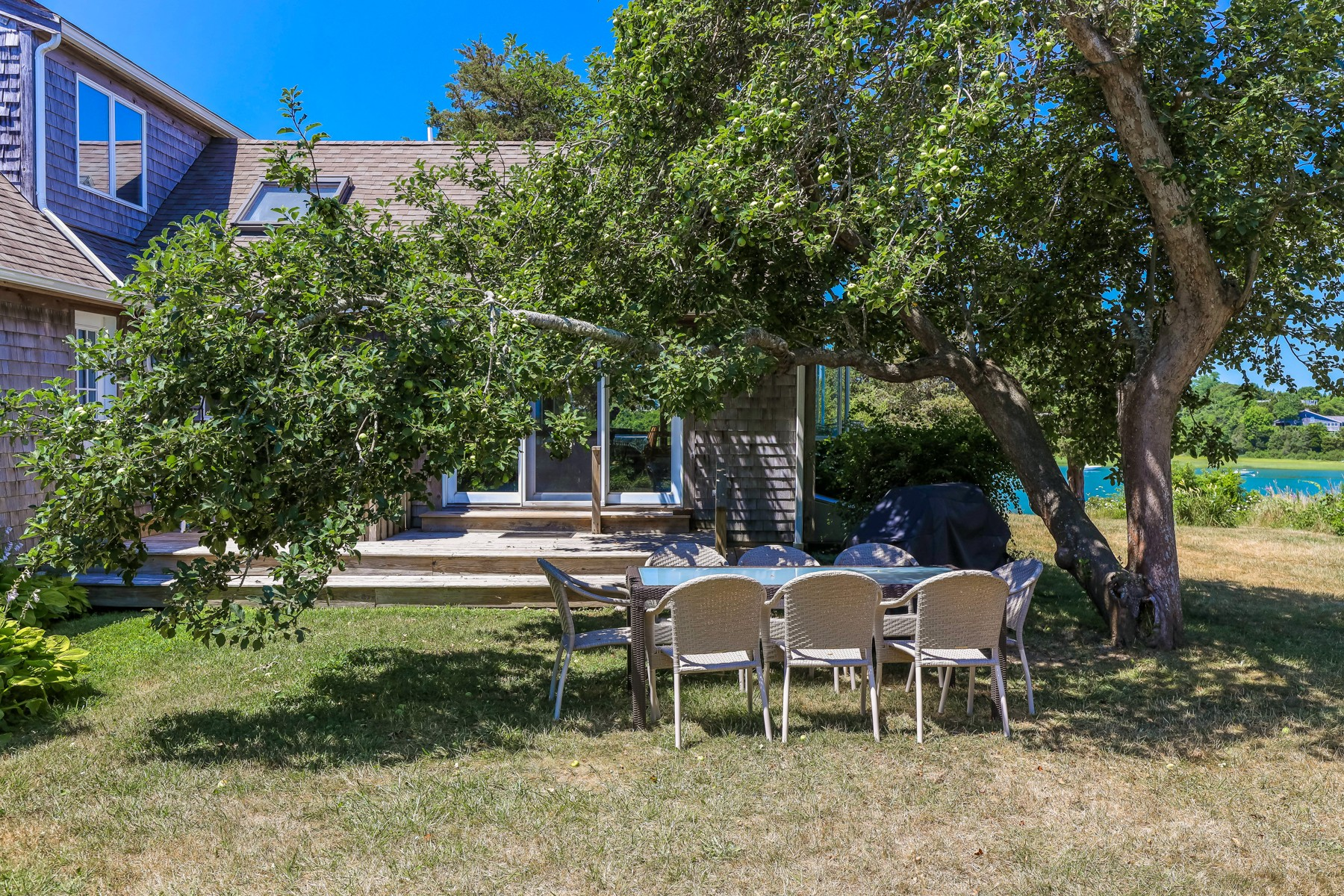 Backyard with dining table
