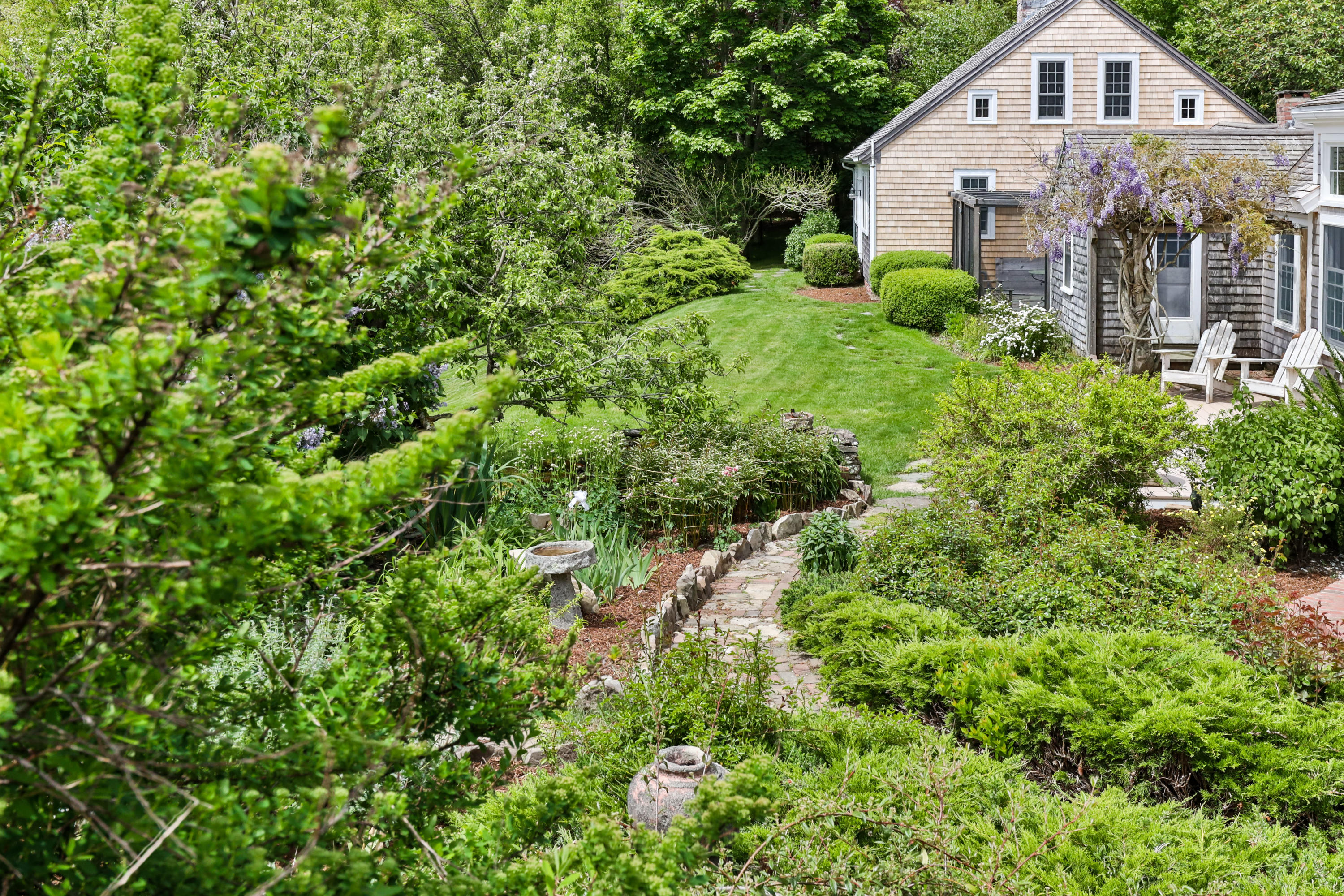 Backyard and garden with path