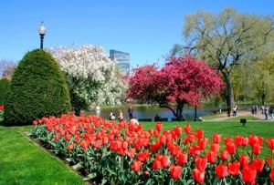 Boston Common, Boston Parks