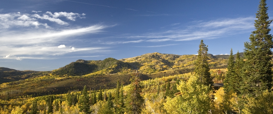Sotheby's International Realty News, Sotheby's Brand, Steamboat Sotheby's International Realty, Steamboat Springs Real Estate, Steamboat Real Estate, Steamboat Colorado Real Estate