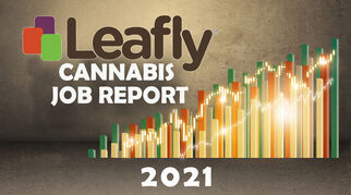 2020cannabisjobreportspecialedition8293