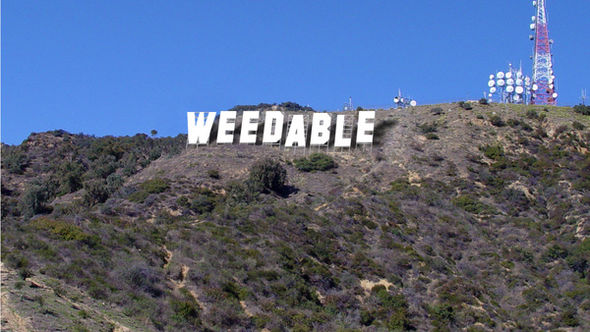Weedable4352