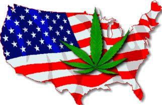 america_weed_fourth5820