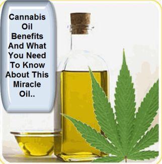 benefitsofcannabisoilandwhatyouneedtoknow4984