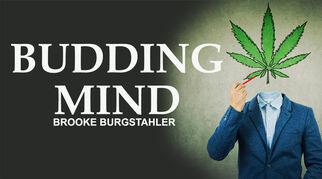 buddingmindbrookeburgstahler8352