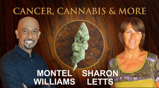 cancercannabismoresharonletts7721