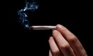 cannabisandthebrainweneedtocounterfalsesc187