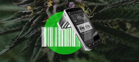 cannabisdataautomationefficiencysuccess7538