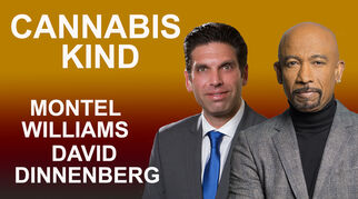 cannabiskinddaviddinnenberg7691