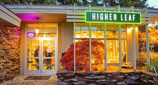 higherleafmarijuanabellevue7317