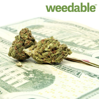 legalmarijuanaindustry3365