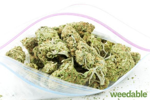 marijuanacanturnyouintoabatnotbatman3392