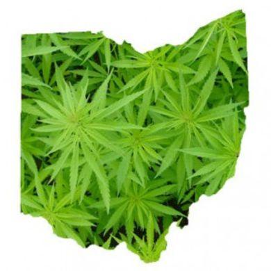 marijuanapolicyprojectunveilsdetailsaboutohi3497
