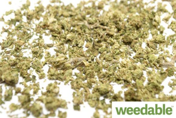 marijuanausageinbhutan3437