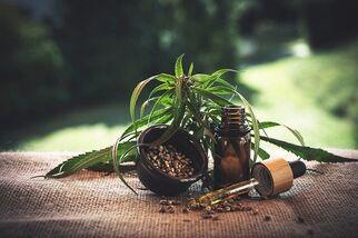 medicalcannabisdeliverylosangeles12949
