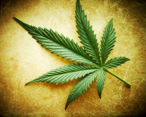 newmexicomarijuanalegalizationbilladvancesin3457
