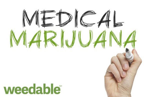 patientadvocatesbringmedicalcannabisissuesto3436