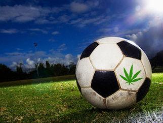 shouldfifaplayersbeallowedtousecannabis6723