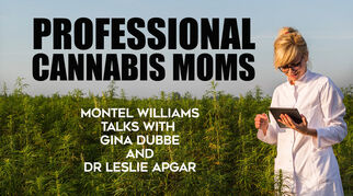 suburbanmomstocannabisprofessionalswomeninw10442