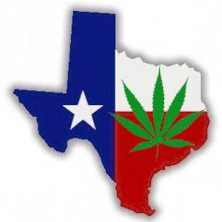 texasgopsupportsmedicalmarijuana5237