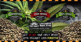 thevaultcannabisseedstore7680