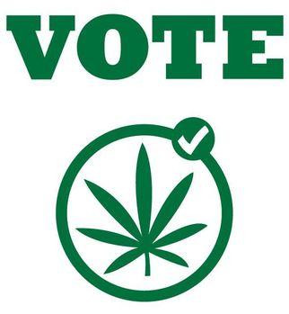 votetolegalizemedicalmarijuana20