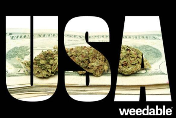 whenandwhywasmarijuanaoutlawed3368