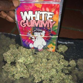 whitegummy7640