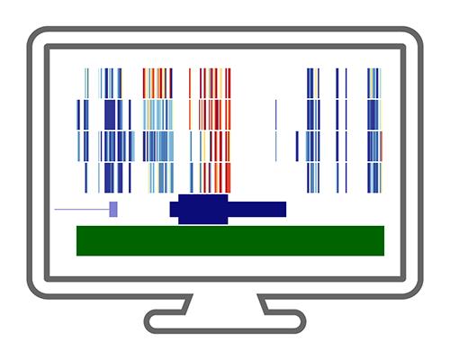 NGS Workflow Analysis