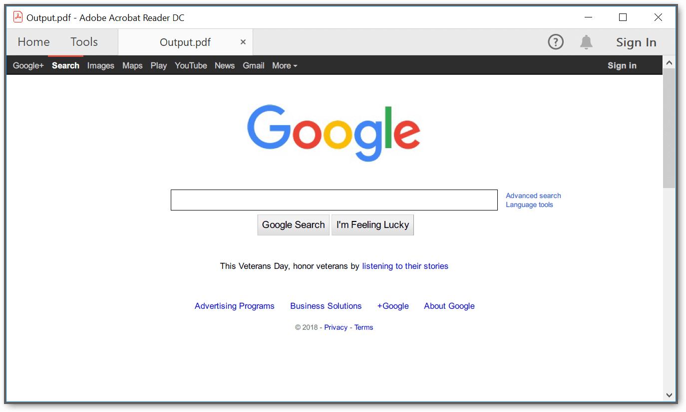 Output PDF document screenshot