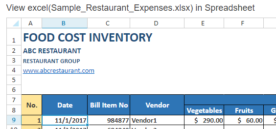 excel file in mvc spreadsheet preview
