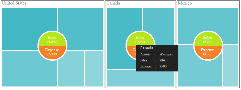 Treemap with summarized circular call out display data values