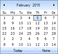 Customize the appearance of DateTimePickerAdv